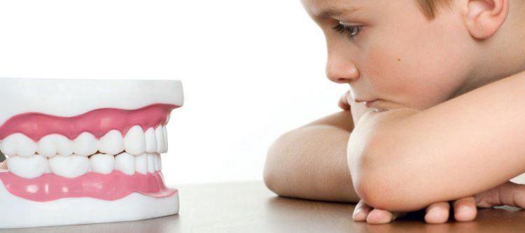 Плюсы использования миогимнастики в ортодонтии